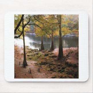 Tree Fall On Calm River Mousepad