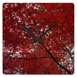 Tree Fall Season Red Brown Autumn Leaves Clocks