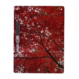 Tree Fall Season Red Brown Autumn Leaves Dry Erase Board