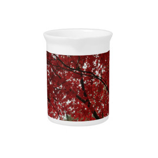 Tree Fall Season Red Brown Autumn Leaves Pitcher