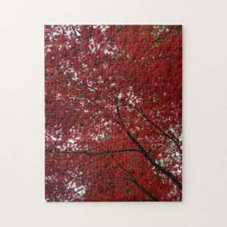 Tree Fall Season Red Brown Autumn Leaves Puzzles