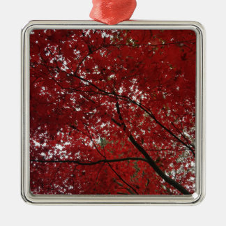Tree Fall Season Red Brown Autumn Leaves Silver-Colored Square Decoration