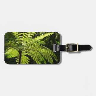 Tree Fern in the Rainforest Luggage Tag