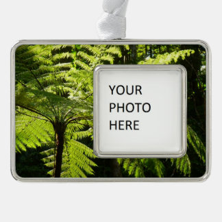 Tree Fern in the Rainforest Silver Plated Framed Ornament