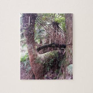 Tree Fern Jigsaw Puzzle