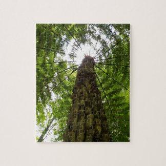 Tree Fern Puzzle