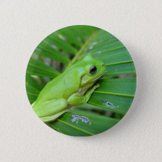 tree frog 6 cm round badge