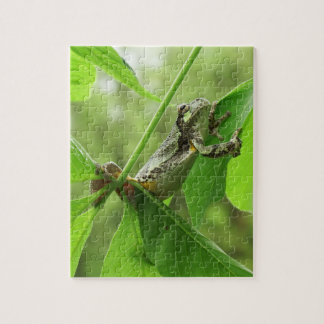 Tree Frog Hanging On Puzzle