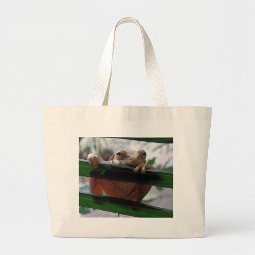 tree frog on a leaf bag