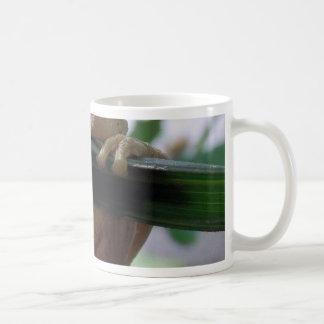 tree frog on a leaf coffee mug