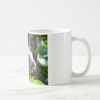 Tree Frog Photo by E.L.D. Coffee Mugs
