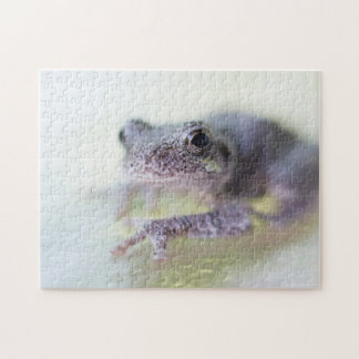 Tree Frog Puzzle with Gift Box