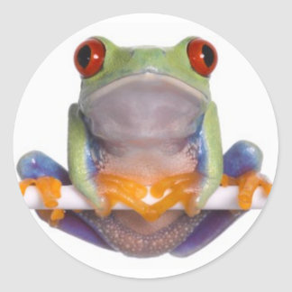 Tree Frog Sticker 2