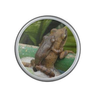 Tree Frogs Speaker