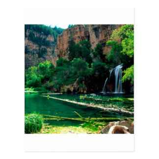 Tree Hanging Lake Glenwood Canyon Colorado Postcard