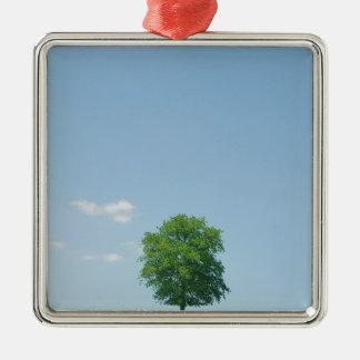 Tree in  a field 2 metal ornament