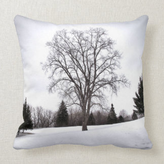 Tree in Landscape Early Spring Snow Cushion