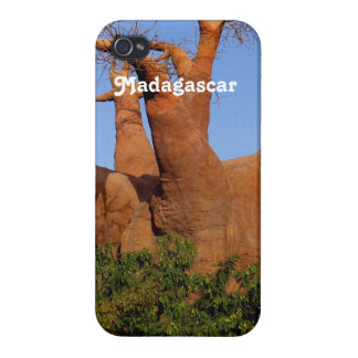 Tree in Madagascar iPhone 4 Cover