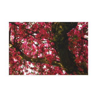 Tree in spring gallery wrap canvas