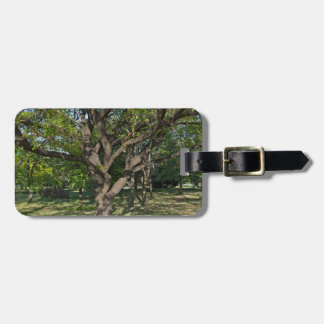 Tree in the springtime luggage tag