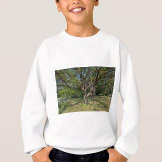 Tree in the springtime sweatshirt