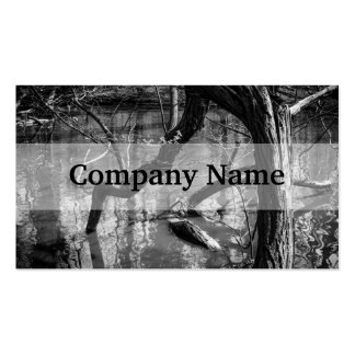 Tree In Water, Dark Horror Photograph, Woods Pack Of Standard Business Cards