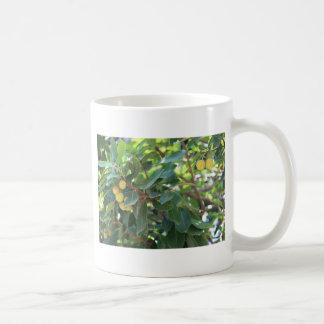 Tree, Italy Coffee Mug