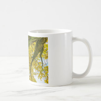 Tree leaves and branches from below in fall coffee mug