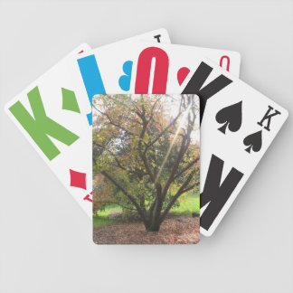 Tree Light Ray Autumn Large Text Playing Cards