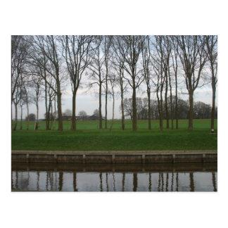 Tree Line Canal Postcard