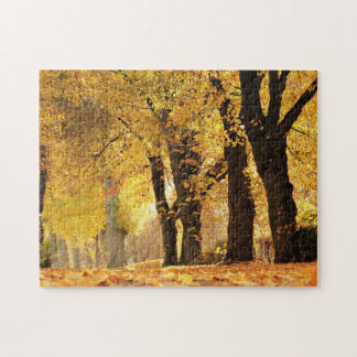Tree Line In Autumn Puzzles