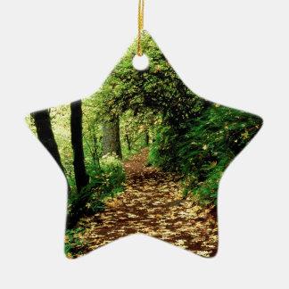 Tree Maple Lined Silver Creek Ceramic Star Decoration