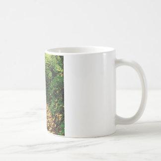 Tree Maple Lined Silver Creek Mug