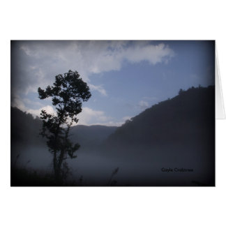 Tree near Fontana Dam, North Carolina Card
