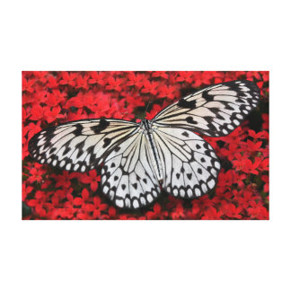 "Tree Nymph Butterfly On Red Flowers 20"" x 12"" Canvas Print"