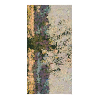 Tree of colors picture card