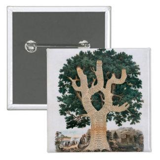 Tree Of Knowledge 15 Cm Square Badge