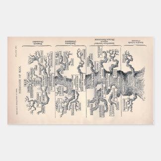 """Tree of Life"" 1859 illustration by Ernst Haeckel Rectangular Sticker"