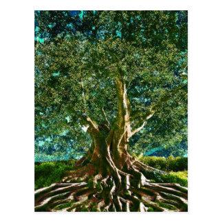 Tree of Life Green Postcard