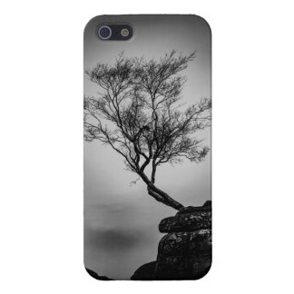 Tree on a Cliff Case For iPhone 5/5S