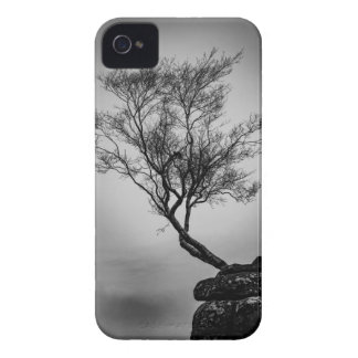 Tree on a Cliff Case-Mate iPhone 4 Cases