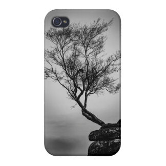 Tree on a Cliff Cover For iPhone 4