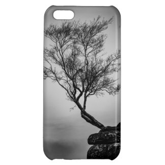 Tree on a Cliff Cover For iPhone 5C