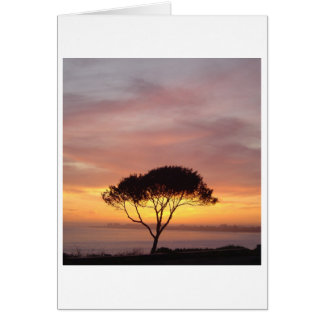 Tree Overlooking Ocean, California, photo card