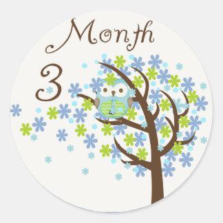 Tree Owl Milestone Month 3 Round Sticker