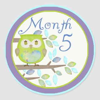Tree Owl Milestone Month 5 Round Sticker