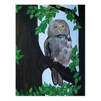 Tree Owl Postcard