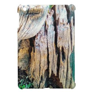 Tree Photography iPad Mini Covers
