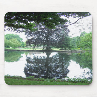 Tree reflected in the water mouse pad