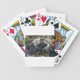 TREE ROOT BICYCLE PLAYING CARDS
